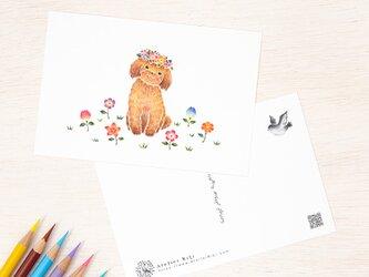 """4枚セット。絵本のような。ポストカード """"花を飾った子犬のチコ"""" PC-312の画像"""
