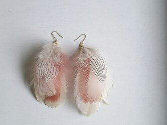 Feather PinkBeige ピアス・イヤリングの画像