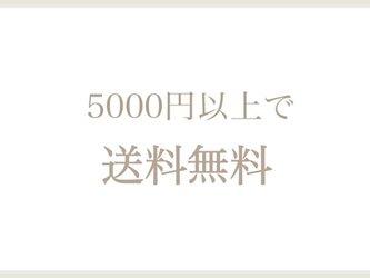 5000円以上で送料無料‼︎の画像