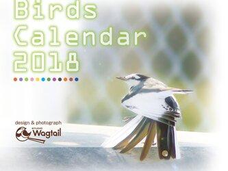 【第2販】Birds Calendar 2018の画像