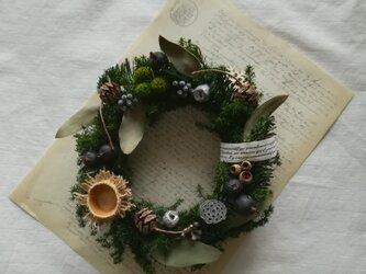 【送料無料】色んな木の実のgreen wreathの画像