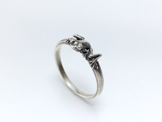 カエルの指輪〜ゴーストグラスフラッグ〜の画像