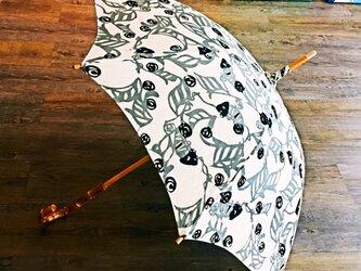 meme型染め日傘 「キモカワ」シリーズ・カメレオン 竹の画像