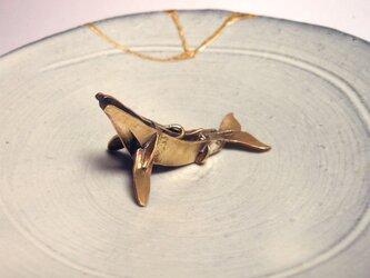 真鍮ザトウクジラの画像