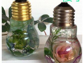 紫陽花の電球瓶のハーバリウムの画像