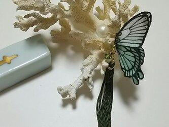 蝶のピアス 小 (アゲハ)の画像