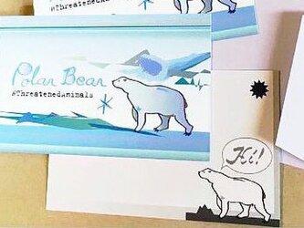 「大人のシロクマ」アートメッセージカード 封筒付き4枚セット 絶滅危惧種動物の画像