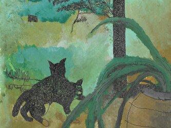 ポストカード4枚セット「猫のいる風景」(光沢紙)の画像
