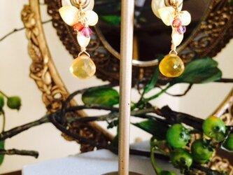 four leaves calico  * クローバー&ビワクオーツ ピアス*の画像