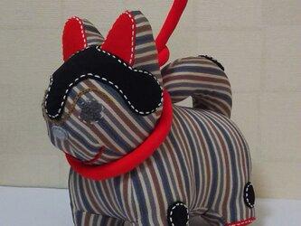 張子犬  BIYO (縞)の画像