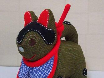 張子犬  BIYO まいかけ (きみるちゃ)の画像