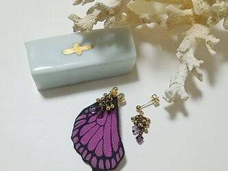 蝶の羽ピアス (アゲハ)の画像