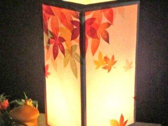 灯りの宿り木≪もみじ葉時雨≫神秘な明かりの温もりを!!の画像