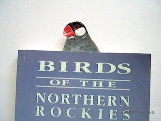 文鳥 桜文鳥 革 インコ しおり 鳥 プレゼント 鳥グッズの画像