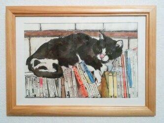 猫と本(原画)水彩・ペン画の画像