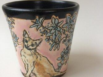 青色アジサイと猫  フリーカップの画像