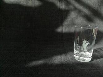 小さなグラス  新芽の画像
