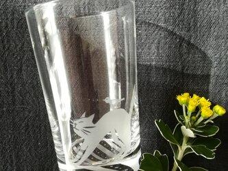 小さなグラス  のび猫の画像
