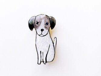 犬くん(ジャックラッセルテリア/ボックス入り)の画像