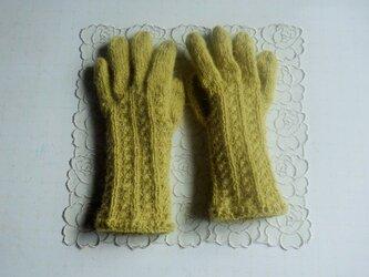 五本指手袋*マスタードの画像