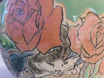 薔薇と眠り猫・小丼の画像