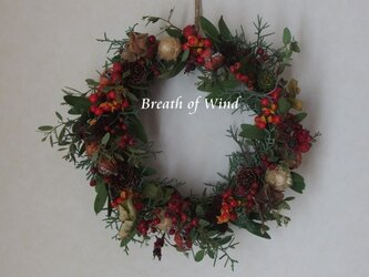 Christmas Wreath 2の画像