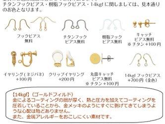 【ピアス・イヤリング金具の見本】の画像