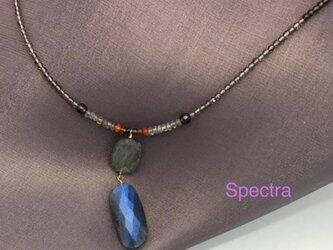 Spectra(スペクトラ)の画像