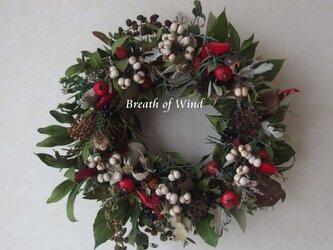 Christmas Wreath 5の画像