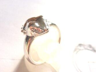 S様ご注文フトアゴの指輪の画像