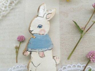 青いケープの仔ウサギちゃんの画像