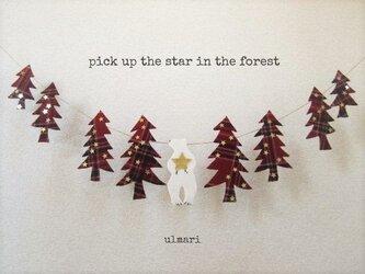 森で星をひろう *ガーランド*の画像