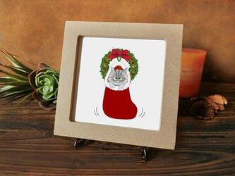 猫 猫たちのクリスマス  ★銀トラちゃん編★の画像