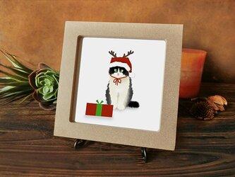 猫 猫たちのクリスマス  ★ハチワレちゃん編★の画像