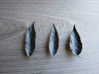 欅の葉のブローチ(1枚)の画像