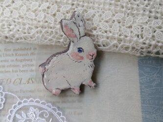 白い仔ウサギちゃんの画像