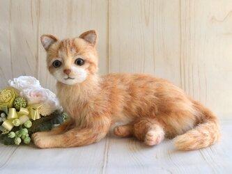 羊毛フェルト 猫 茶トラ 横座りの画像