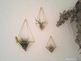 北欧インテリア「真鍮製のヒンメリ 壁掛けエアプランツハンガー SMLの三個セット 観葉植物」の画像
