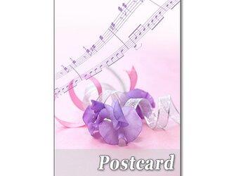 1274) スイトピー、デルフィニューム、チューリップ、ミモザ      ポストカード5枚組の画像
