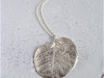 Eucalyptus leaf necklace {P073SV}の画像