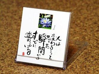 日めくりカレンダー (花編)の画像
