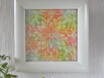 曼荼羅「秋麗」の画像