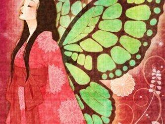 大正ロマンポストカード『蝶』の画像