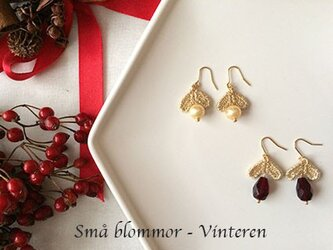 Små blommor - Vinteren:小さな花 - 冬(bのみ)の画像