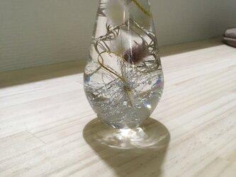 ハーバリウム 植物標本 JHA 日本ハーバリウム協会の画像