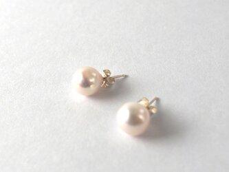 【あこや真珠シルバーピアス w】の画像