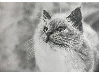 【肖像画】細密鉛筆画(オーダー)・A4サイズ~の画像