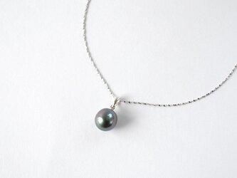 【タヒチ真珠シルバーネックレス】の画像