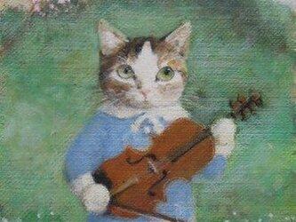 バイオリン・早春(K.K様売約済みです。)の画像