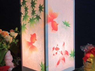 灯りの宿り木≪金魚のお昼散歩≫神秘な明かりの微笑みを!!の画像